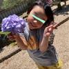 紫陽花ごはん