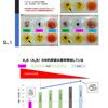 #067:A2B(A3B)型のB抗原量はA1B型よりも通常増加しているの(はてな?)