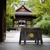 梨木神社で萩の花を