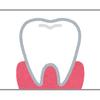癒合歯を知っていますか?赤ちゃんに生えてきた歯が1本か2本かわからないときは疑ってみて