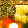 東京ドームシティ ラクーアのクリスマスイルミネーション