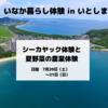 糸島シーカヤックと夏野菜の農業体験概要