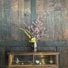西光寺枝垂れ桜横の古民家カフェ