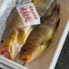 2018年10月16日 小浜漁港 お魚情報