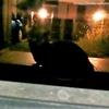 雨夜の来訪者(2)