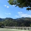 京都、10月30日の嵐山はいつもよりワイルドでした!