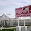 425祭2017in宮城レポート(1) 山元いちご農園に行きました