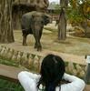 やっぱり子連れにオススメ・東山動物園