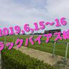2019,6,15~16 トラックバイアス結果 (東京競馬場、阪神競馬場、函館競馬場)
