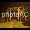 写真AC:ダウンロード数上位6位~10位までの写真素材を紹介します。