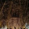 2018年冬の仙台旅行1日目