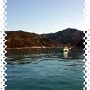 【石倉渡船】期待しすぎると落胆も大きい!紀伊長島へカマス釣り