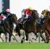 4.4    阪神競馬 注目馬