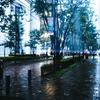 雨が降ると体調が悪くなるなんて迷信だと思っていた的な話