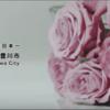 【愛知県豊川市】主人が撮影を担当「とよかわバラPR動画」配信中♪