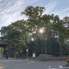 SSK (Sunny-Side of Kyoto)(+228/593)