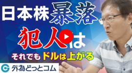 【FXセミナー】日本株暴落の犯人は〇〇!それでもドル/円は上昇する「和田仁志氏」 2021/10/1