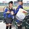 甲子園に、日本酒『日本盛』の生酒サーバーが登場!?野球観戦に日本酒というスタイルは定着するのでしょうか?