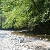 【松山市郊外】子供と川遊びするならせせらぎ公園がお勧め!無料キャンプもできるよ☆