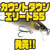 【ラパラ】人気シリーズに新サイズ「カウントダウンエリート55」追加!