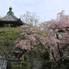 京都西山「善峯寺」西国第二十番札所