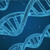バルサのDNAとカンテラ至上主義