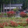 能登峨山キリシマの郷