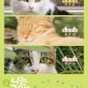 映画「나는 고양이로소이다(吾輩は猫である)」と、映画「劇場版 岩合光昭の世界ネコ歩き」