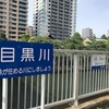 目黒川、京浜運河ランニング〜水辺を走るのは楽しい