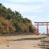 【宮崎】日本神話とブラタモリに魅せられた私が宮崎の観光地を紹介する