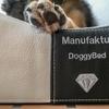 DOG BED ドッグベッド