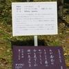 万葉歌碑を訪ねて(その1161)―奈良市春日野町 春日大社神苑萬葉植物園(121)―万葉集 巻八 一六二七