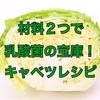 【レシピ】材料2つで乳酸菌の宝庫!キャベツレシピ。