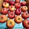 【ふるさと納税】台風の被害が大きかった長野県長野市からりんごが届きました!