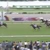 京都5R 500万下 ダイアトニック圧巻の2勝目!一口馬主で初めての圧勝!
