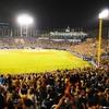 横浜スタジアムが大幅観客増に踏み切る!スポーツ観戦はコロナ渦の中どこまで緩和されていく?