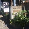 喧嘩からの岡本太郎記念館。