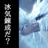 【冰気錬成】イヴェルカーナ装備の抜刀大剣が強い件【MHW アイスボーン】