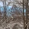 雪景色は日の出から2時間以内