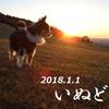 #251 謹賀新年2018