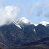 八ヶ岳山麓のミヤマホオジロ