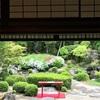 大好き!和の世界観 ー京都 桜鶴苑ー
