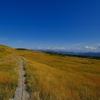 秋晴れのテーブルマウンテン・頂上に広がる金色の草原 @苗場山