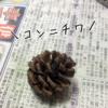 ストラクチャー(山)を作る(6) 木を作る(1)『試作』