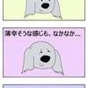 犬の笑顔(笑う犬 小夏)