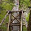 奥祖谷の二重かずら橋