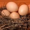 玉子料理を作る。 卵は健康で美味しい家計の味方です