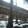 永平寺と恐竜博物館