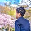 桜とランドセル姿の最強新一年生男子を撮影するの巻