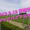 2019,8,18 日曜日 トラックバイアス予想 (新潟競馬場、小倉競馬場、札幌競馬場)